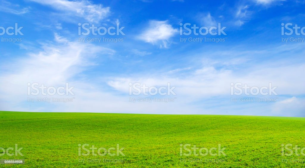 field - Lizenzfrei Agrarbetrieb Stock-Foto