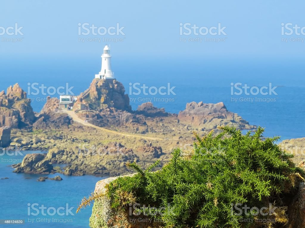 Field Plant And La Corbiere Lighthouse Stock Photo Download Images, Photos, Reviews