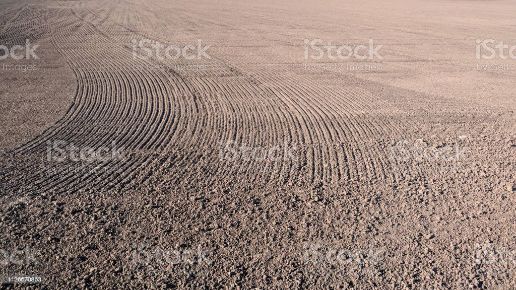 field ready for planting seeds. Agribusiness and agricultural land processing stock photo