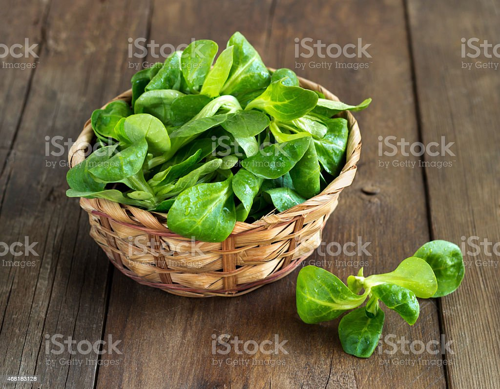 Field salad in a basket on table stock photo