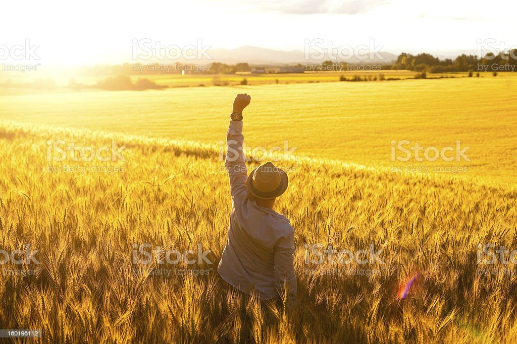 Field Standing Young Adult Man With Arms Raised Success royalty-free stock photo