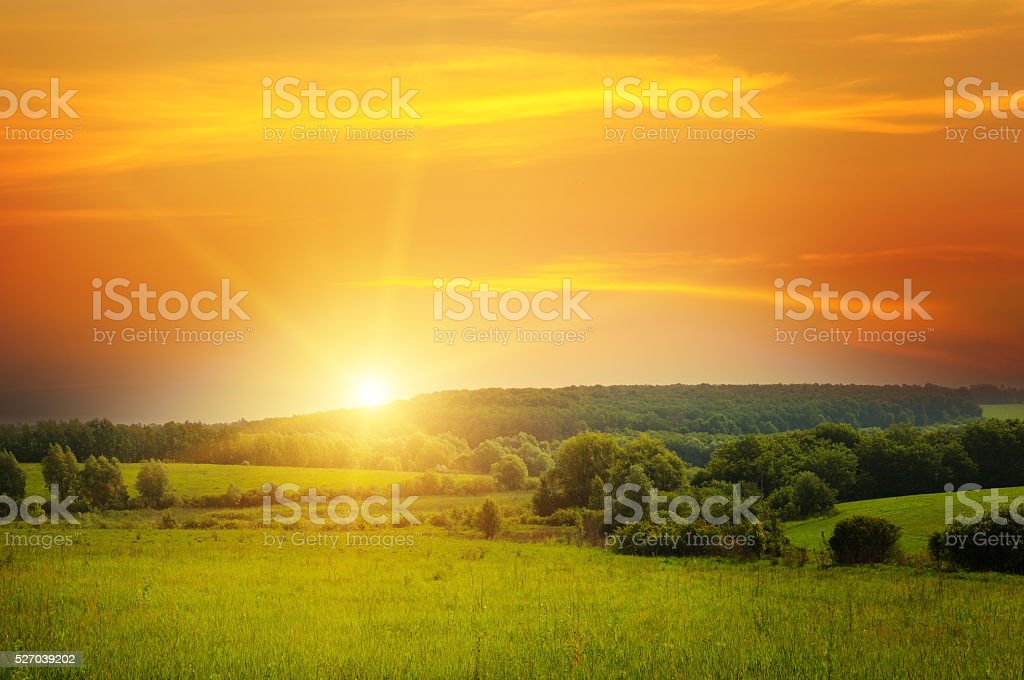 field, sunrise and blue sky royalty-free stock photo