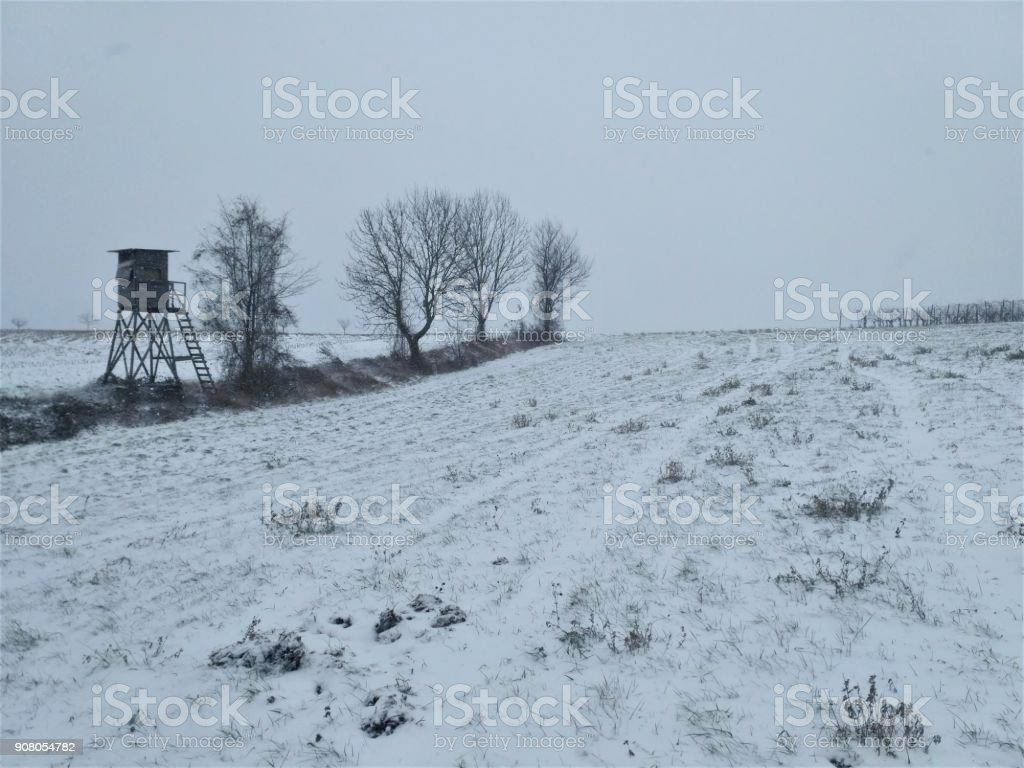Field, trees and high seat covered in snow stock photo