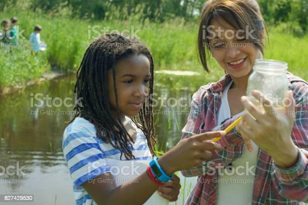 Field trip to the pond picture id827429530?b=1&k=6&m=827429530&s=612x612&h=jtxul xngj5n7mv3zc6phl18t3fvv0c5vqorg94boas=