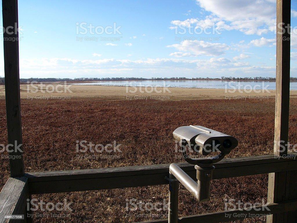 field viewer stock photo