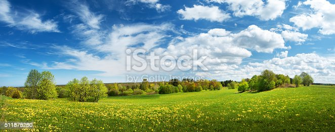 istock Field with dandelions and blue sky 511878280