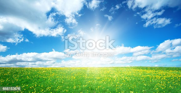 istock Field with dandelions and blue sky 658152676