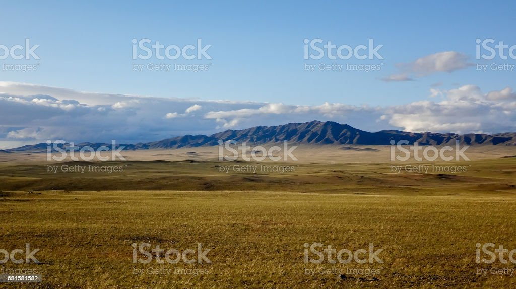 field with mountains stock photo