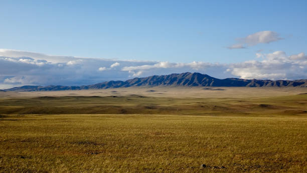 field with mountains landscape of outdoor wild field with mountains at horizon steppe stock pictures, royalty-free photos & images