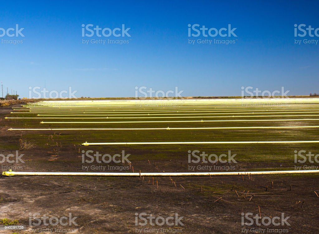 Field With Sprinklers & Pipes stock photo