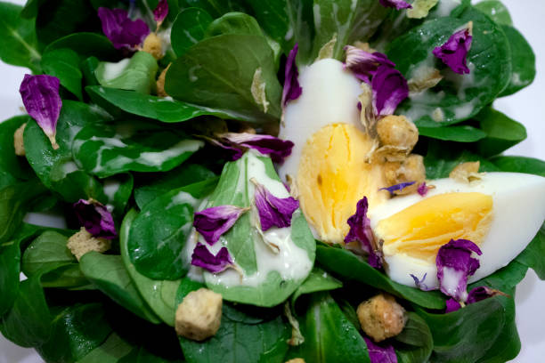 field_salad_with_egg_croutons_and_viola – Foto
