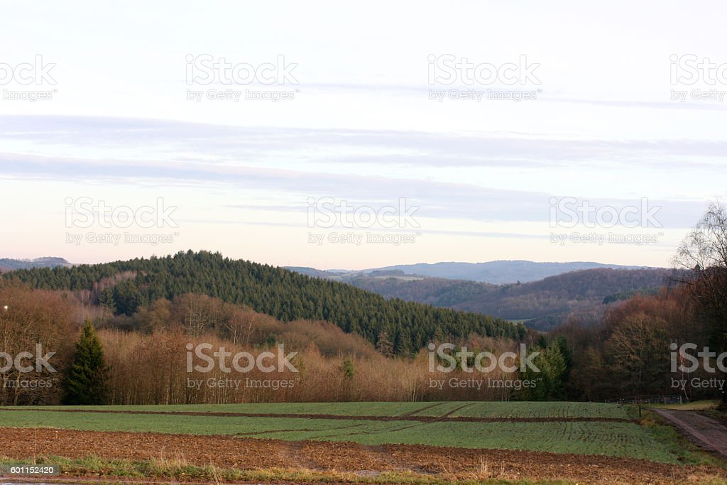 Fields and forests stock photo