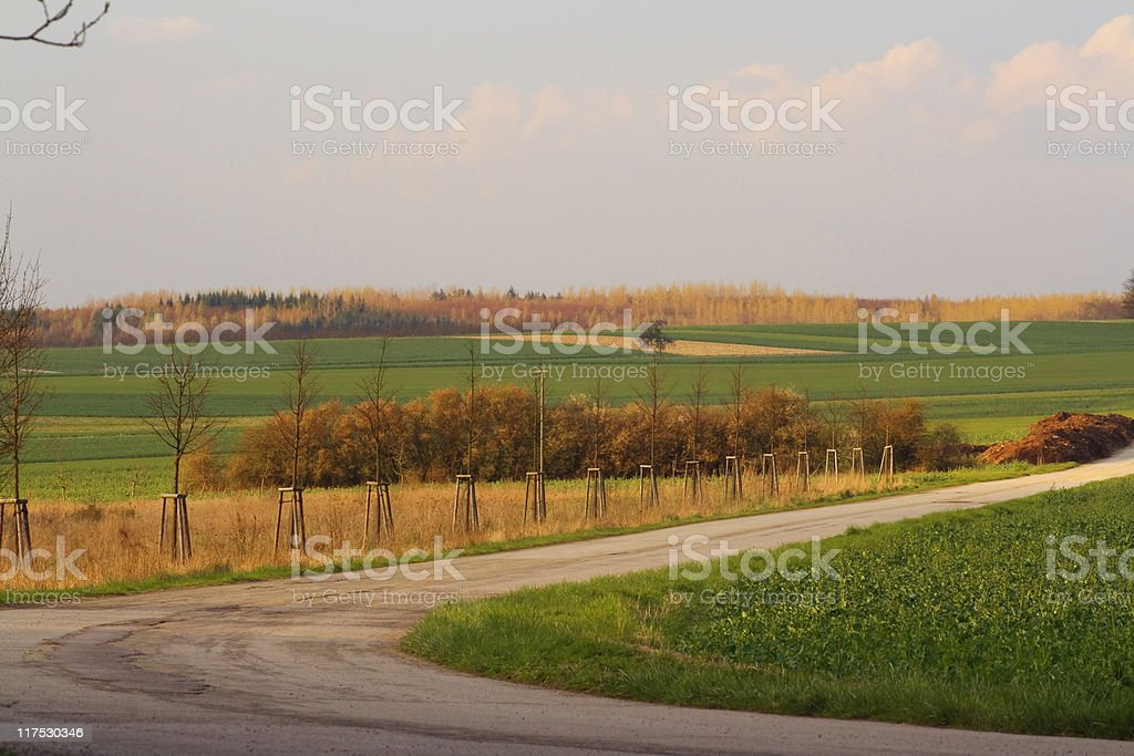fields asphalt road royalty-free stock photo