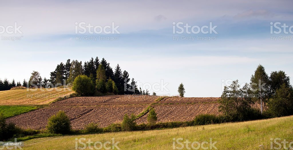 fields at harvest time in Waldviertel, Lower Austria stock photo