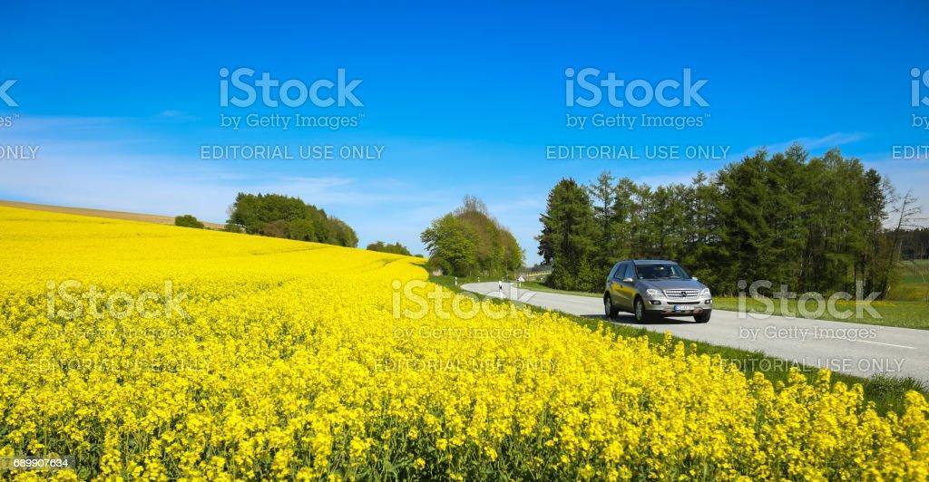 Fields in Germany stock photo