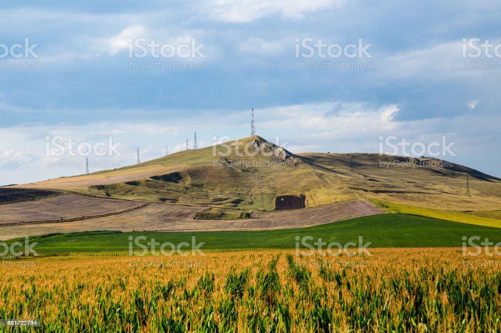Felder in Rumänien – Foto