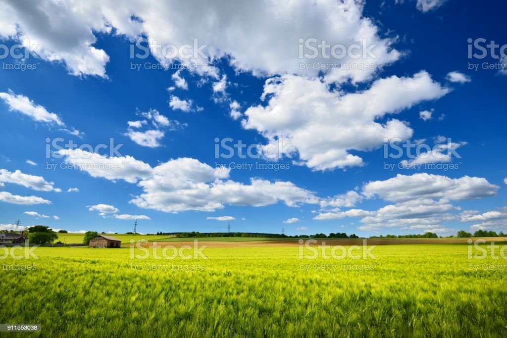 Fields in the coutryside. Germany, Plafz stock photo