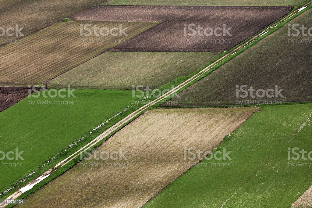 fields in the spring royalty-free stock photo