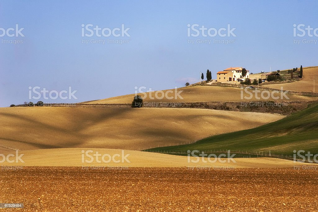 Fields in the tuscany royalty-free stock photo