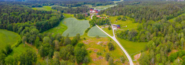 Fields landscape, aerial view from above, single road stock photo