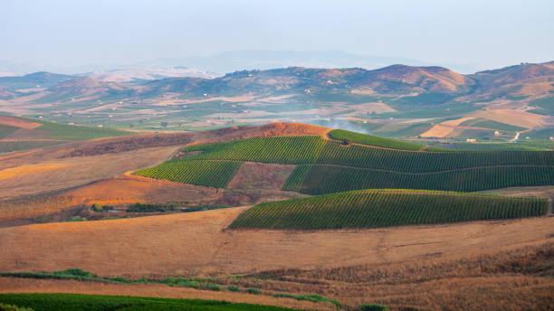 Fields landscape - Sicily stock photo