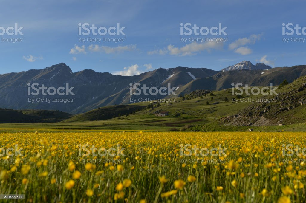 Campos de oro - Gran Sasso d ' Italia - foto de stock