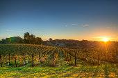 Napa Valley California at Sunrise