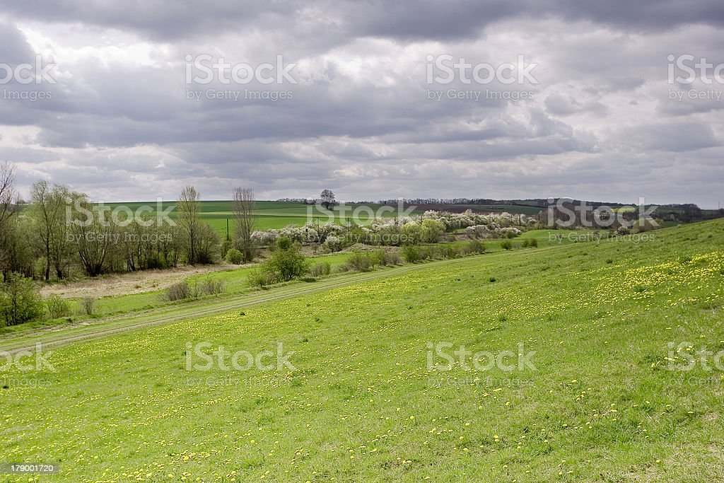 fields of nature royalty-free stock photo