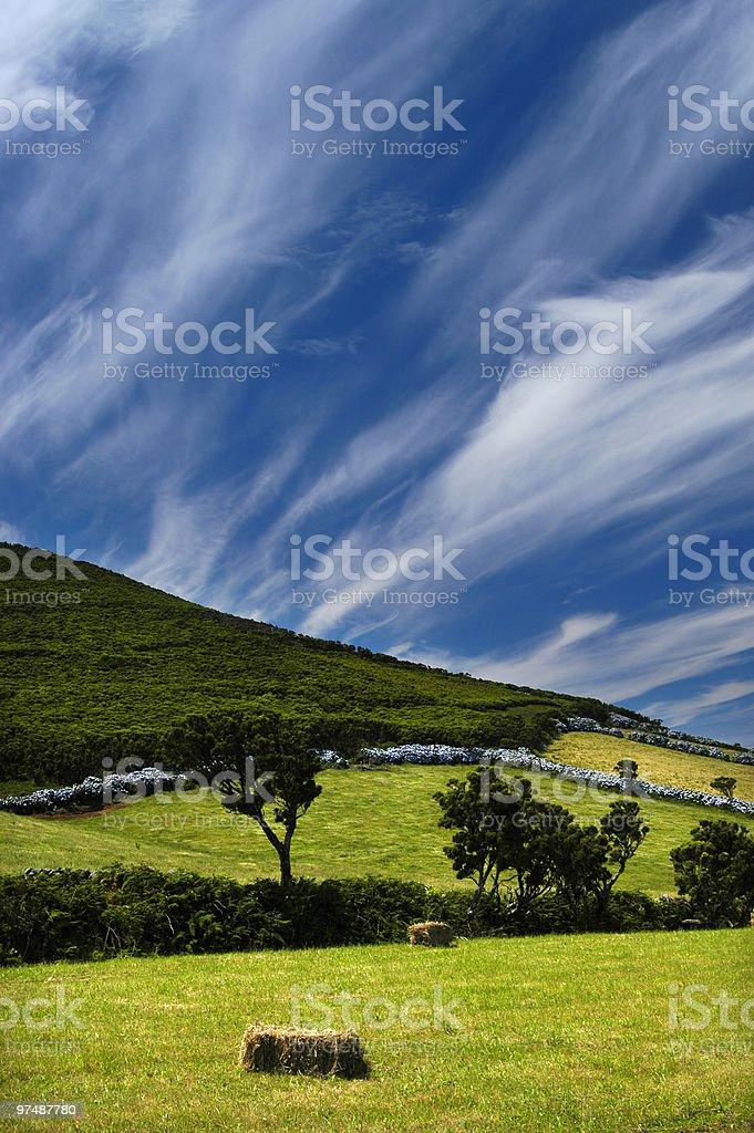 fields royalty-free stock photo