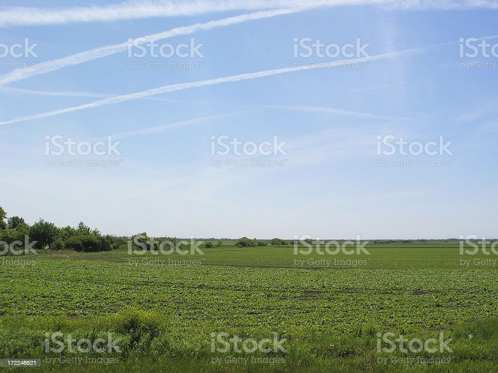 Fields under the blue sky royalty-free stock photo