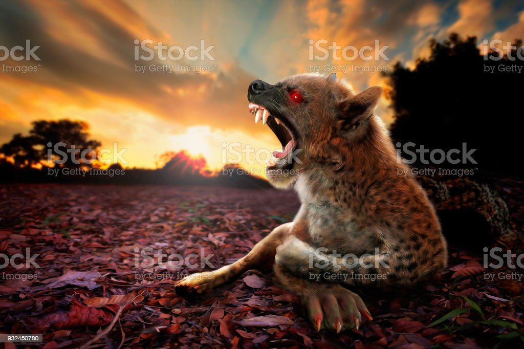 Fierce Chupacabra creature, a digital arts creative edit image- Artistic digital illustration oil painting style. A composite from my own images of dog, sunset landscape and illustration graphic painting. Top selling image. Africa Stock Photo