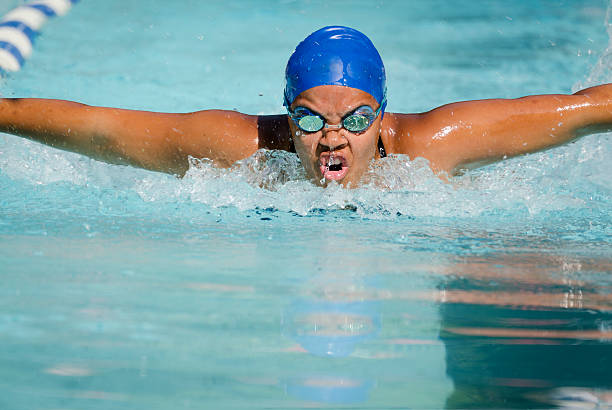 Fierce Female Butterfly Competitor stock photo