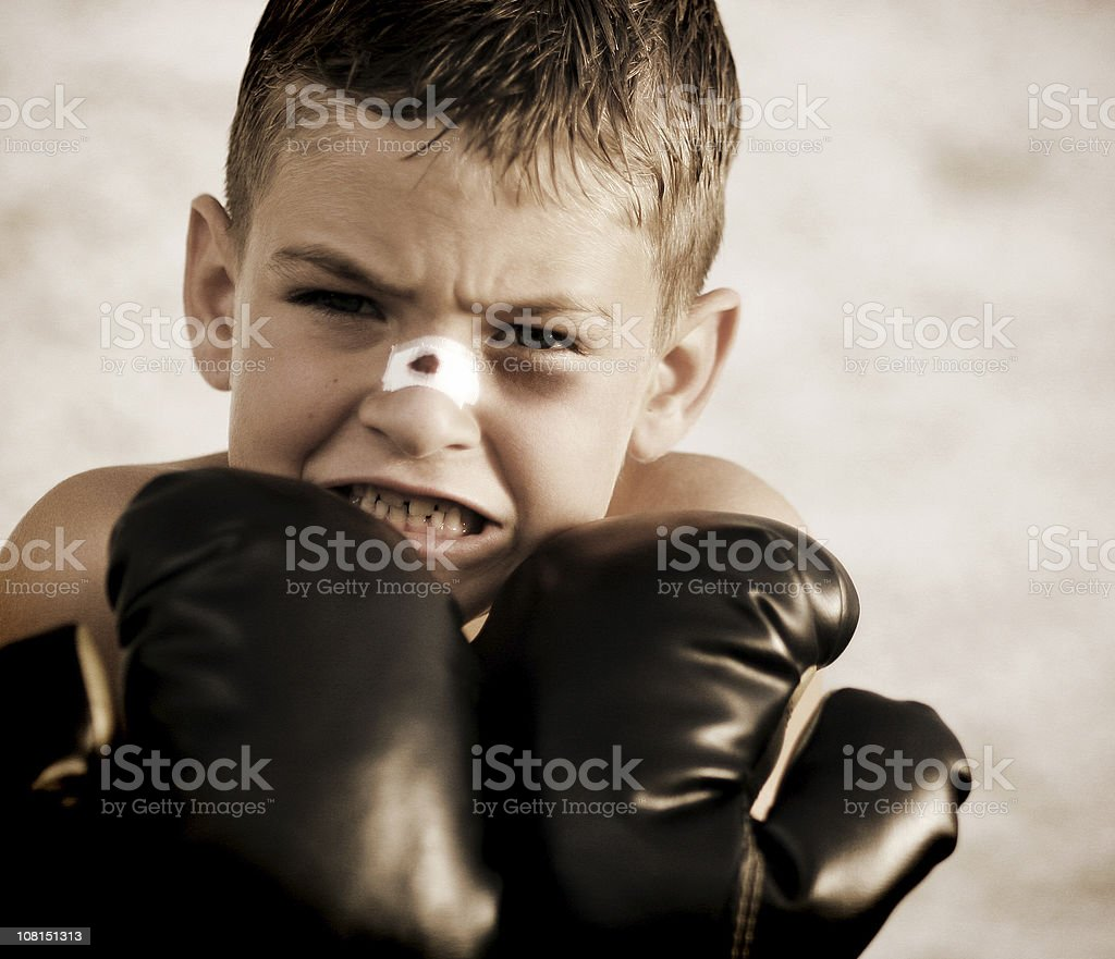 Fierce Fighter (Tight Crop) royalty-free stock photo