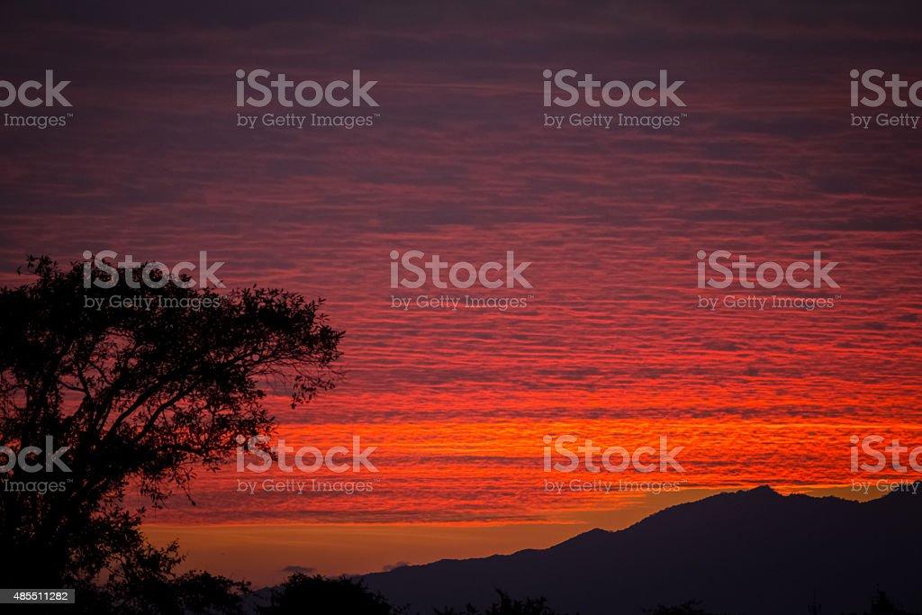 Leidenschaftliche Sonnenuntergang 2 – Foto