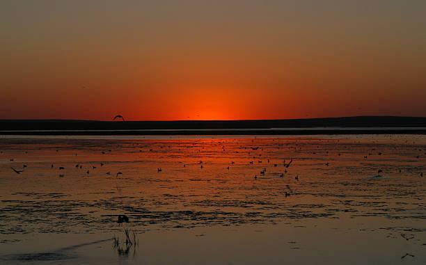 Fiery Montana Sunset