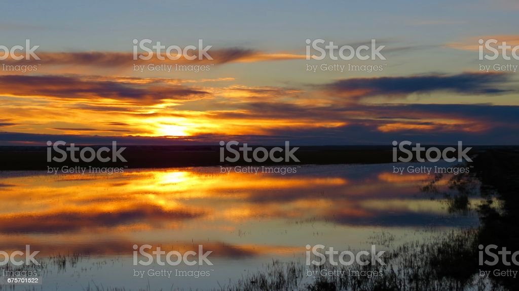 Fiery reflecting prairie sunset royalty-free stock photo
