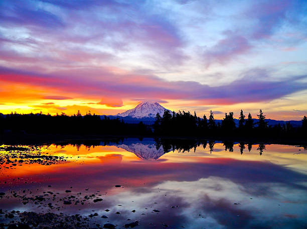 Fiery Sunrise Over Mt. Rainier An amazing sunrise over Mt. Rainier. mt rainier stock pictures, royalty-free photos & images