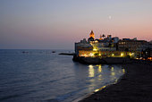 Huge agave fruit, beach and rocky coast with view of the beautiful town of Sitges, Spain.