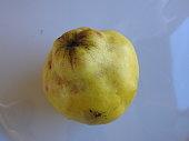 quince fresh  lemon against white background