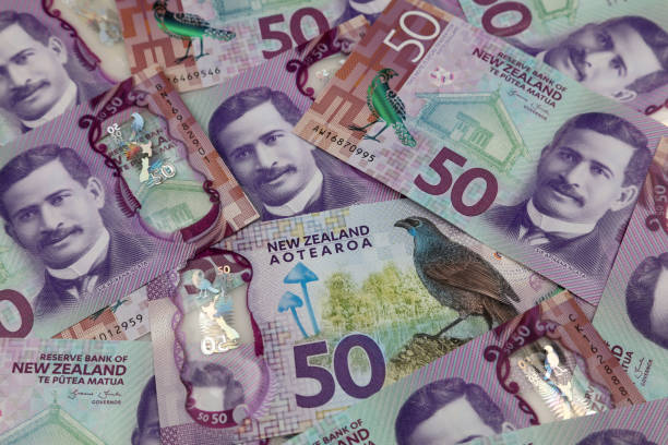 NZ fifty dollar banknotes stock photo