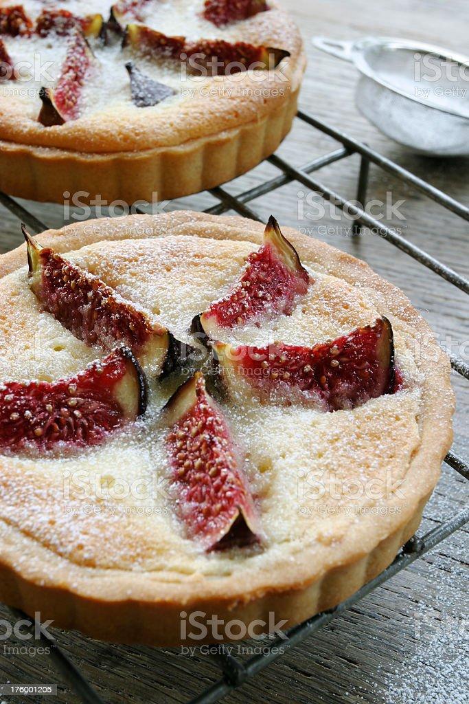 Fig tarts. stock photo