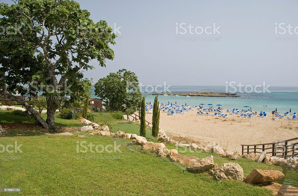 Fig Tree Bay royalty-free stock photo