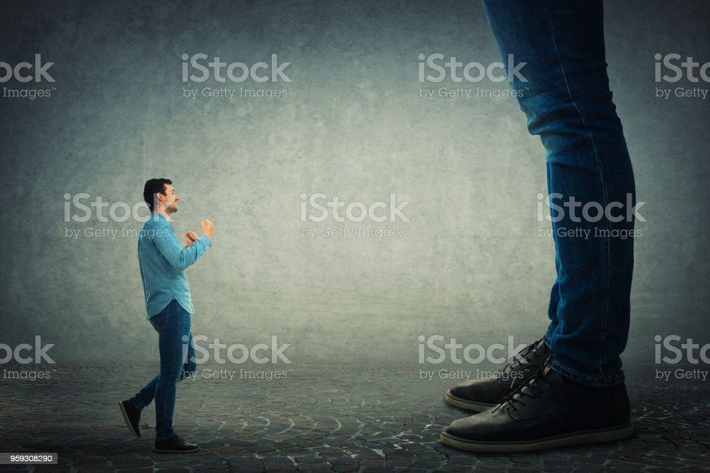 seine Bosse kämpfen – Foto