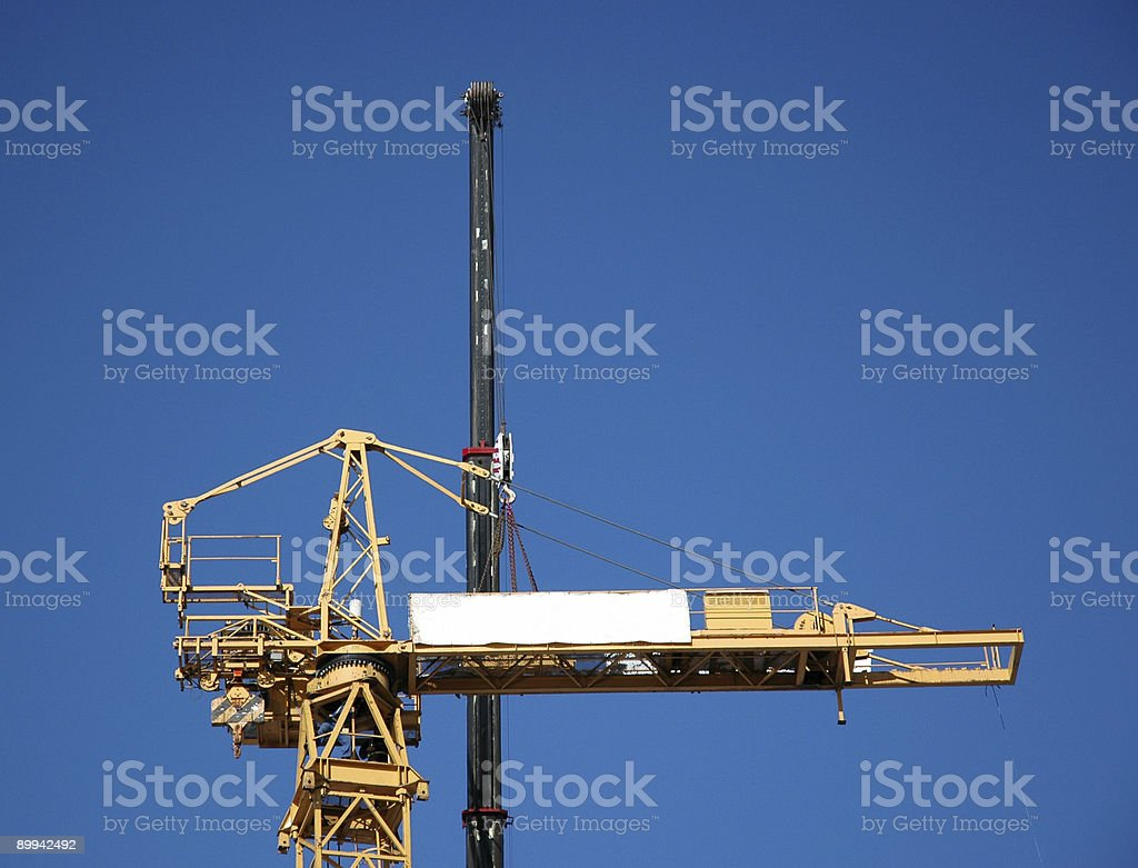 Fight of Cranes royalty-free stock photo