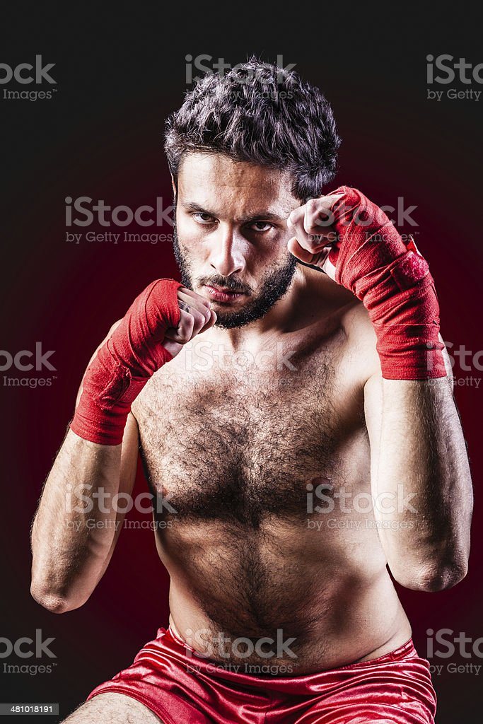 Fight! royalty-free stock photo