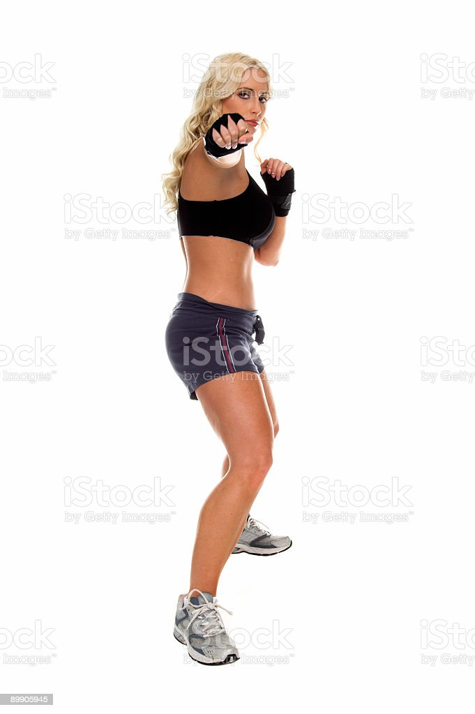 Fight Stance royalty-free stock photo