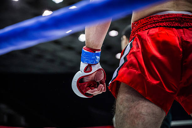 格闘家のコーナーにリング - レスリング ストックフォトと画像
