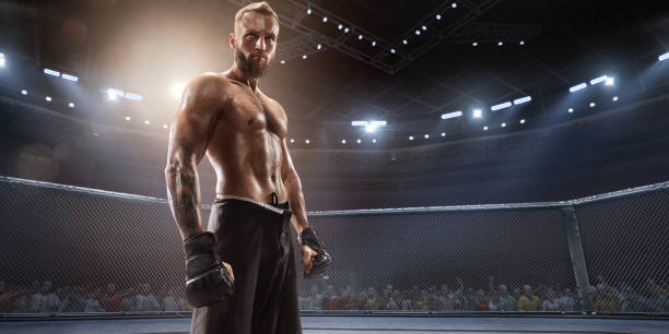 mma fighter in professional boxing ring - combat sport stock pictures, royalty-free photos & images