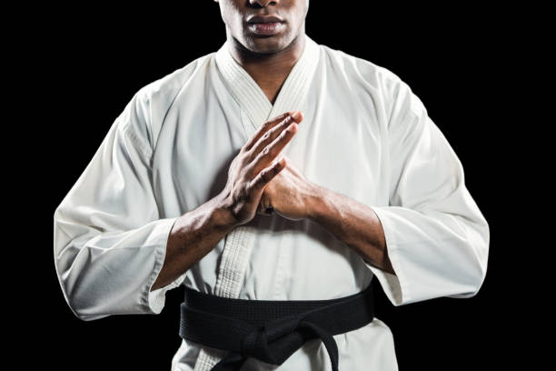 fighter performing hand salute - martial arts stock photos and pictures