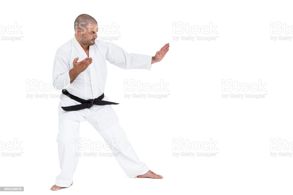 Fighter performing karate stance stock photo
